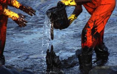 062 Enviro VE petrol